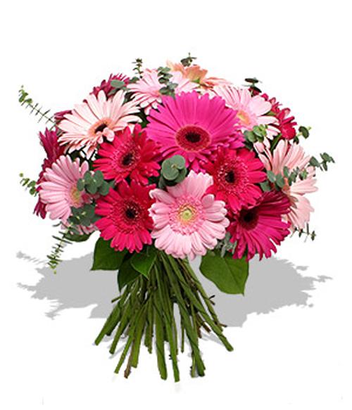 День рождения поздравления коллеге женщине прикольные