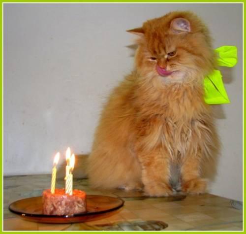 Красивое поздравление с днем рождения дочке на 32 года от мамы